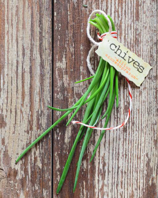 chives, green, plant, vegetable, vegetables, tag, wood stockcreations
