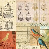 Pixwords The image with cage, bird, birds, drawing Jodielee