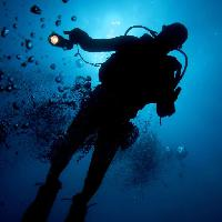 Pixwords The image with water, man, diver, blue, light, bubbles Planctonvideo