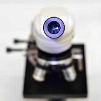 Pixwords The image with camera, lens, microscope catiamadio