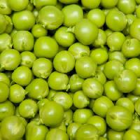 Pixwords The image with fruits, peas, green, eat, food Brad Calkins - Dreamstime