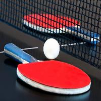 Pixwords The image with ball, ping, pong, ping pong, net Theresa Granger (Shyfotogrfr)